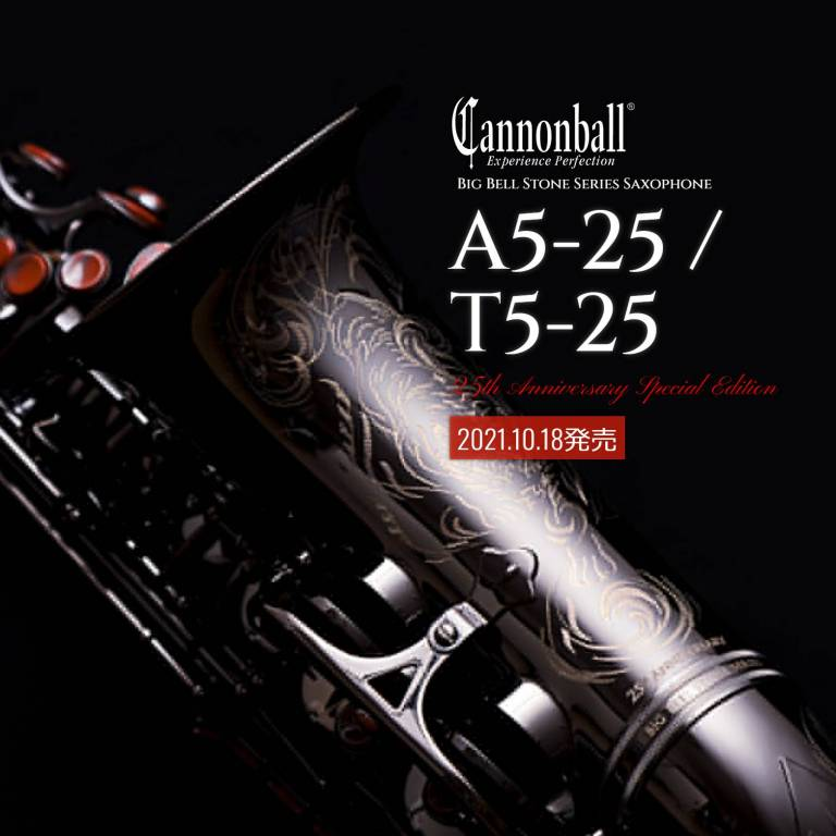 cannon25model_top